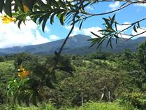 Farms and Acreages for Sale in Rincon de la Vieja, Guanacaste $199,000