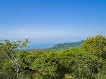 Lots and Land for Sale in Dominical, Puntarenas $235,000