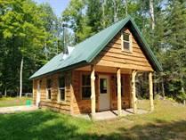 Homes Sold in Mercer, Wisconsin $94,000