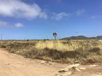 Lots and Land for Sale in Ex-Ejido Ursulo Galvan, Ensenada, Baja California $195,000