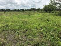 Commercial Real Estate for Sale in Guardia , Liberia, Guanacaste $13,300,000