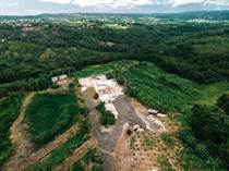 Farms and Acreages for Sale in Bo. Magos, Puerto Rico $850,000