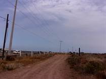 Lots and Land for Sale in Ursulo Galvan, Ensenada, Baja California $1,150,000