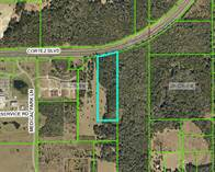 Commercial Real Estate for Sale in brooksville , Florida $1,295,000