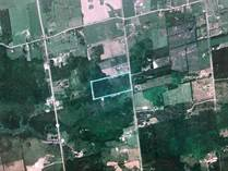 Lots and Land for Sale in Mono, Ontario $1,299,999