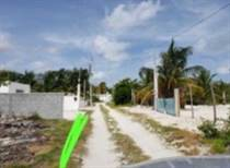 Lots and Land for Sale in Chelem, Yucatan $31,200