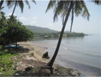 Lots and Land for Sale in Samana, Samaná $1,200,000