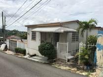 Homes for Sale in Mayaguez PR, MAYAGUEZ, Puerto Rico $49,500