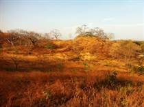 Lots and Land for Sale in Sardinal, Guanacaste $103,000