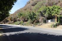 Lots and Land for Sale in Chapala, Jalisco $4,000,000