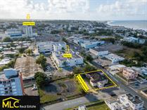 Commercial Real Estate for Sale in BO HATO ABAJO, Arecibo, Puerto Rico $349,000