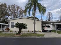 Homes for Sale in Highland Village, Lakeland, Florida $37,500