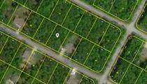 Lots and Land for Sale in Crossville, Tennessee $4,500