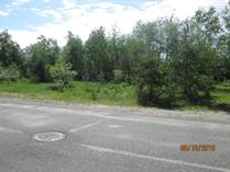 Lots and Land for Sale in Ignace, Ontario $6,000