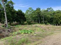 Lots and Land for Sale in Uvita, Puntarenas $74,500