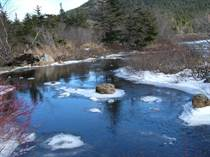 Lots and Land for Sale in Pouch Cove, Newfoundland and Labrador $149,900