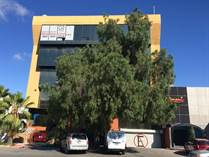 Commercial Real Estate for Rent/Lease in Zona Urbana Rio Tijuana, Tijuana, Baja California $400 monthly