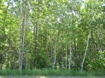 Lots and Land for Sale in Woodlawn, Ottawa, Ontario $179,000