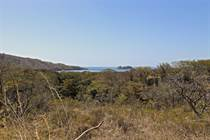 Lots and Land for Sale in Palo Alto, Playa Hermosa, Guanacaste $225,000
