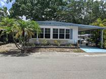 Homes for Sale in Shady Lane Village Mobile Home Park, Clearwater, Florida $24,900