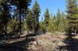 Lots and Land for Sale in Libby, Montana $200,000