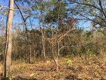 Farms and Acreages for Sale in Cabo Velas District, Guanacaste $1,800,000