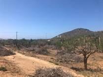 Lots and Land for Sale in El Pescadero, Baja California Sur $80,000
