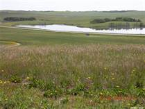 Lots and Land for Sale in Saskatchewan, Grant Rm No. 372, Saskatchewan $249,000