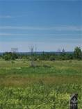 Lots and Land for Sale in Alfred, Ontario $79,900