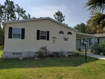 Homes for Sale in Walden Woods South, Homosassa, Florida $57,000