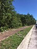 Commercial Real Estate for Sale in Playa del Carmen, Quintana Roo $53,000