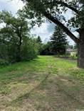Lots and Land for Sale in Pense, Saskatchewan $20,000
