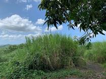 Lots and Land for Sale in BO CUCHILLAS, Morovis, Puerto Rico $20,000