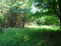 Lots and Land Sold in Hopetown, Ontario $59,900
