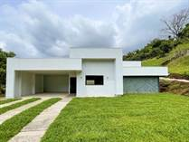 Homes for Sale in Naranjo, Alajuela $112,000
