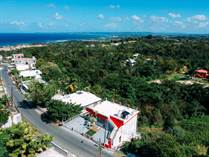 Multifamily Dwellings for Sale in Puntas, Rincon, Puerto Rico $350,000