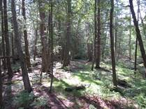 Lots and Land for Sale in Lion's Head, Northern Bruce Peninsula, Ontario $42,000