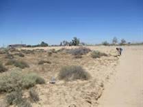 Lots and Land for Sale in Col. Brisas del Golfo, Puerto Penasco/Rocky Point, Sonora $59,800