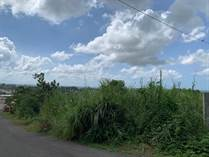 Lots and Land for Sale in BO CUCHILLAS, Morovis, Puerto Rico $29,100