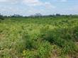 Lots and Land for Sale in Diani Beach  KES3,500,000