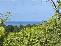 Lots and Land for Sale in Drake Bay, Puntarenas $1,000,000