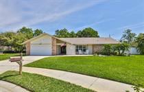 Homes for Sale in Countryside, Clearwater, Florida $519,000