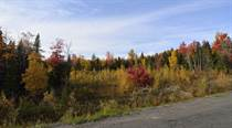 Lots and Land for Sale in Noonan, Maugerville, New Brunswick $39,900