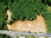 Lots and Land for Sale in Puntas, Rincon, Puerto Rico $85,000