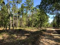Lots and Land for Sale in Keystone Heights, Florida $6,000