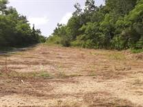 Lots and Land for Sale in Ensenada, Rincon, Puerto Rico $53,584