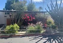 Homes for Sale in Ramon Mobile Park, Palm Springs, California $53,000