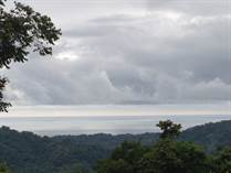 Farms and Acreages for Sale in Platanillo, Puntarenas $235,000