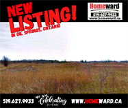 Homes for Sale in Oil Springs, Ontario $19,900