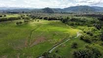 Farms and Acreages for Sale in Palmar Sur, Puntarenas $2,850,000